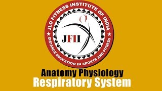 JFII EXPLAINED CHAPTER 7       RESPIRATORY SYSTEM
