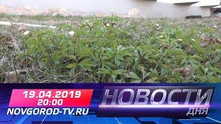 19.04.2019 Новости дня 20:00