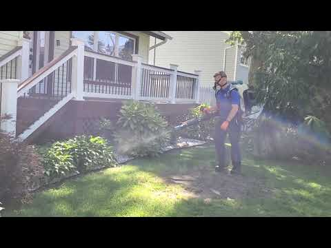 A Thorough Mosquito & Tick Treatment in Toms River, NJ