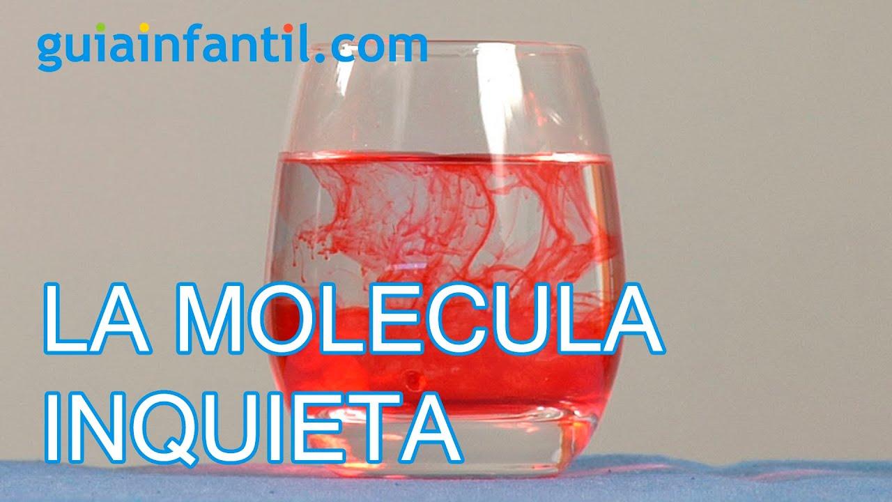 La molecula inquieta. Ciencia para niños