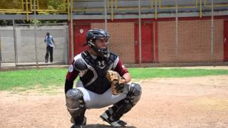 Nelson Manuel Torres Baseball Skills Video