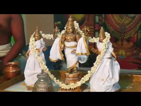 Vattavilai Then Tirupati Thirumanjanam Sevai Video 2