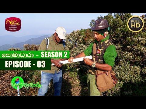 Sobadhara - සොබාධාරා | Season- 02 | Episode 03 | 2018-01-19 | Rupavahini Documentary