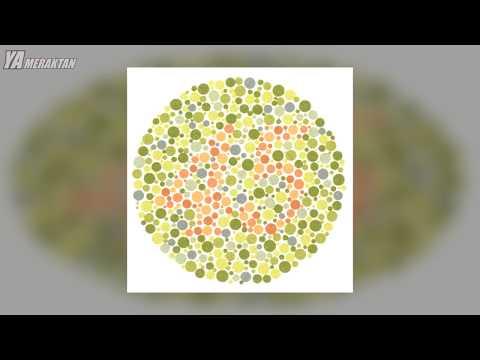 Renk Körü İnsanların Gözünden Dünya Nasıl?