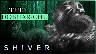 Dobhar-Chú: The Giant Otter Monster Of Ireland
