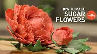 How To Make Sugar Flowers For Cakes | Gumpaste Cake Decorating Tutorial