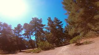 Tuto FPV - Tree Dance I