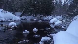 Moment zen: Traversée de Charlevoix