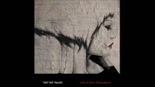 Veil Veil Vanish - What Will You Say Tonight