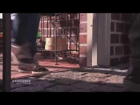 Video Ratgeber Haus + Garten - Frühling im Gewächshaus