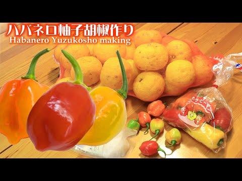 , title : '簡単な柚子胡椒作り!ハバネロなら簡単! 柚子丸ごと使い切る第一弾
