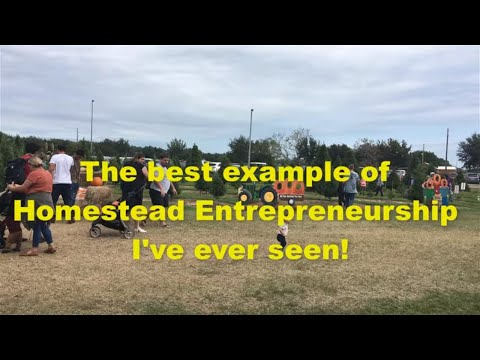 💲HOW TO MONETIZE YOUR HOMESTEAD 💲 THIS IS CRAZY! 💰😎