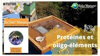 Bee'full nutrition : couvrir les besoins en protéines et en oligo-éléments