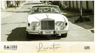 Malome Vector - Lerato (Official Audio)