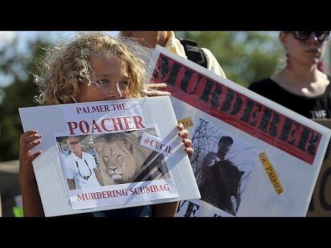 ΗΠΑ: Οργισμένα μηνύματα στο ιατρείο του οδοντιάτρου που σκότωσε το διάσημο λιοντάρι Cecil