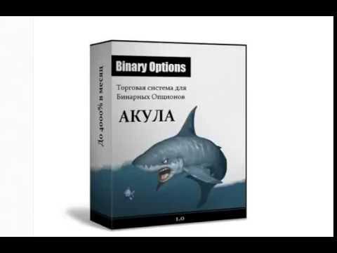 Как создать сайт бинарные опционы