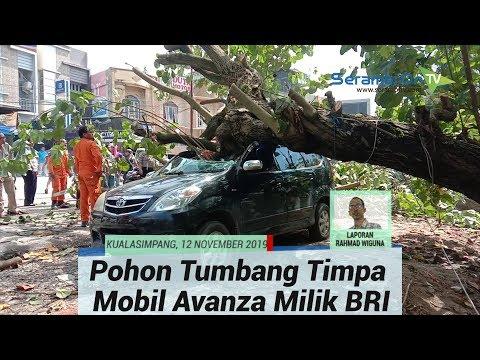 Mobil Avanza Milik BRI Unit Pasar Pagi Aceh Tamiang Hancur Tertimpa Pohon Tumbang