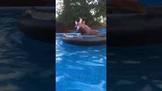 Bull riding for pool tutorial