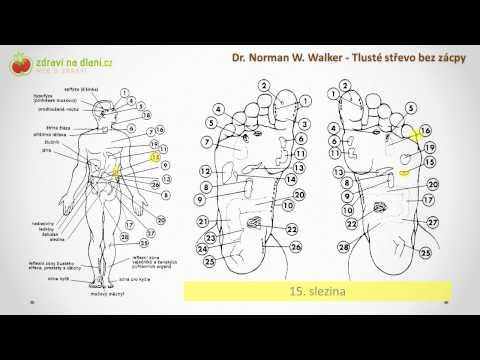 Klystýr stojací podlahové z prostaty