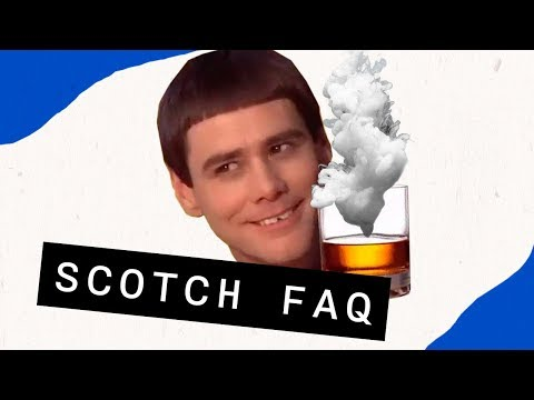 Top 5 Questions about Scotch