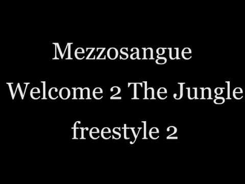 Significato della canzone Welcome to the jungle di Mezzosangue