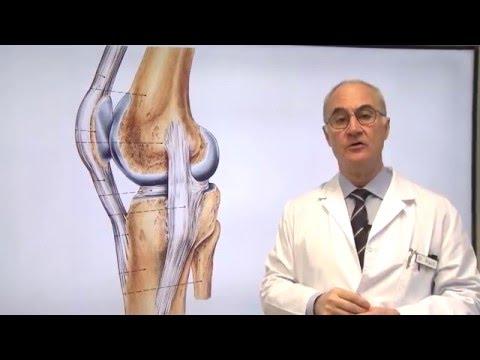 Hernia de rodilla