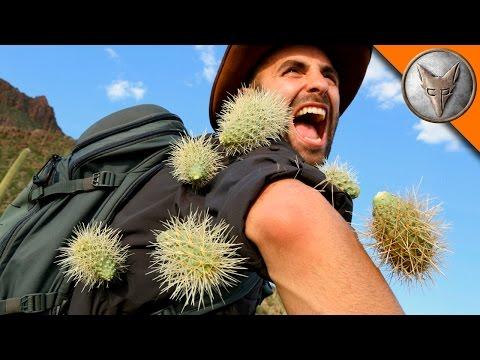 Kaktusy útočí - Brave Wilderness