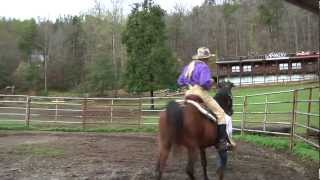 How to Properly Regain Control of a Spooked Horse