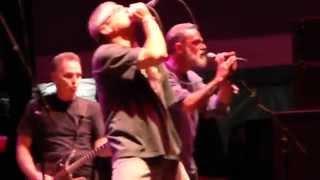 Descendents - Jean Is Dead - Chicago Riot Fest 2014
