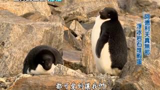 世界的盡頭 - 聚焦南極