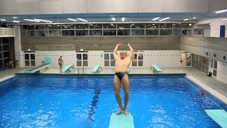 Diving & Highdiving Training 2015
