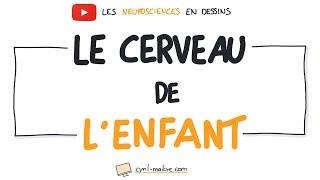 Vignette de [VIDÉO] CERVEAU INFANTILE - Les neurosciences en dessins