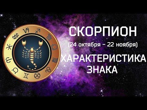 СКОРПИОН  // Характеристика знака зодиака