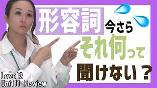 動詞と形容詞見分け方 Level2/Unit11/Review[#84]
