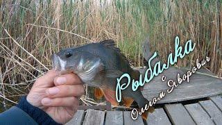 Ловля рыбы на мормышку летнюю