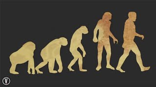 This is why Evolution is WRONG!