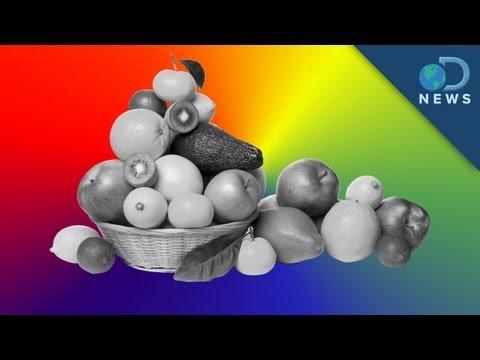 Význam barev