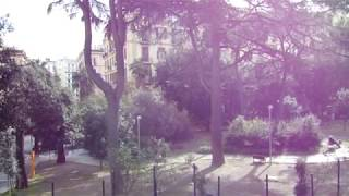 Dji mavic mini relaxing cinematic video