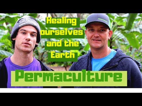 Healing and Regenerating the World with Ecological Landscaping