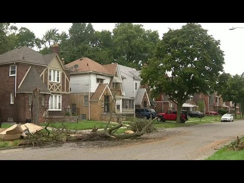 Residents concerned over safety issue after fallen tree, debris litter Detroit street
