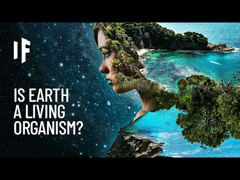 What If the Earth Was One Living Organism?