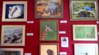 Exhibition - solo