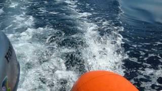 ホンダ2馬力+ゴムボート走行シーン (対馬西海岸)
