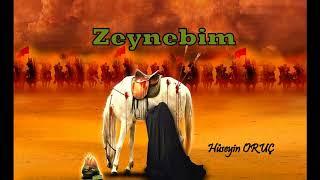 Ağlatan Kerbela Zeyneb Dedi Hüseynim Gitme :(