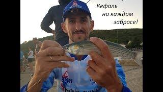 Ловля кефали в черном море снасть и насадка
