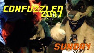 ConFuzzled 2017 - Sunday