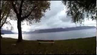 Despertar junto a un lago