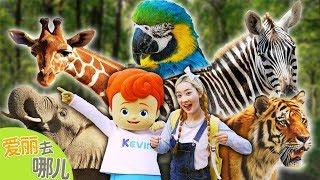 [爱丽去哪儿] 爱丽的秋季郊游特别企划!在儿童大公园里寻找消失的动物吧 | 爱丽和故事 EllieAndStory