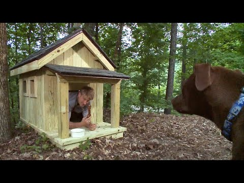 Pete Nelson Builds The Ultimate Dog House | Treehouse Masters