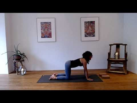 Yoga Basics with Adela Serrano
